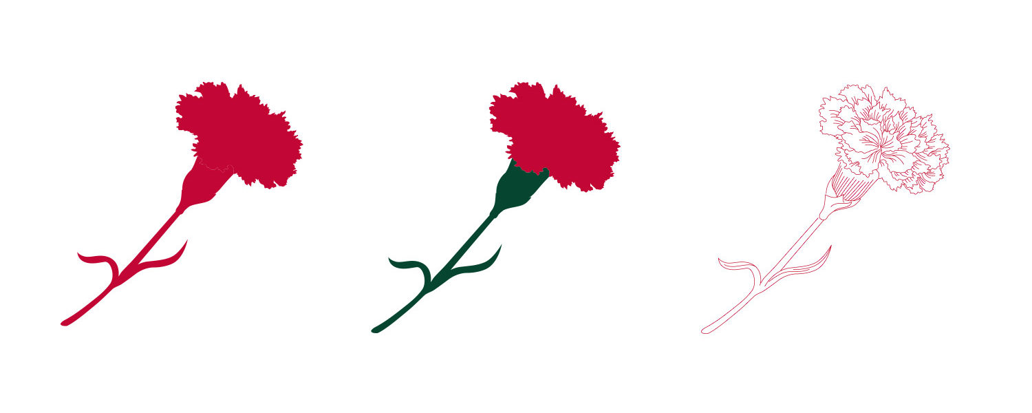 carnations-3up-1500x600