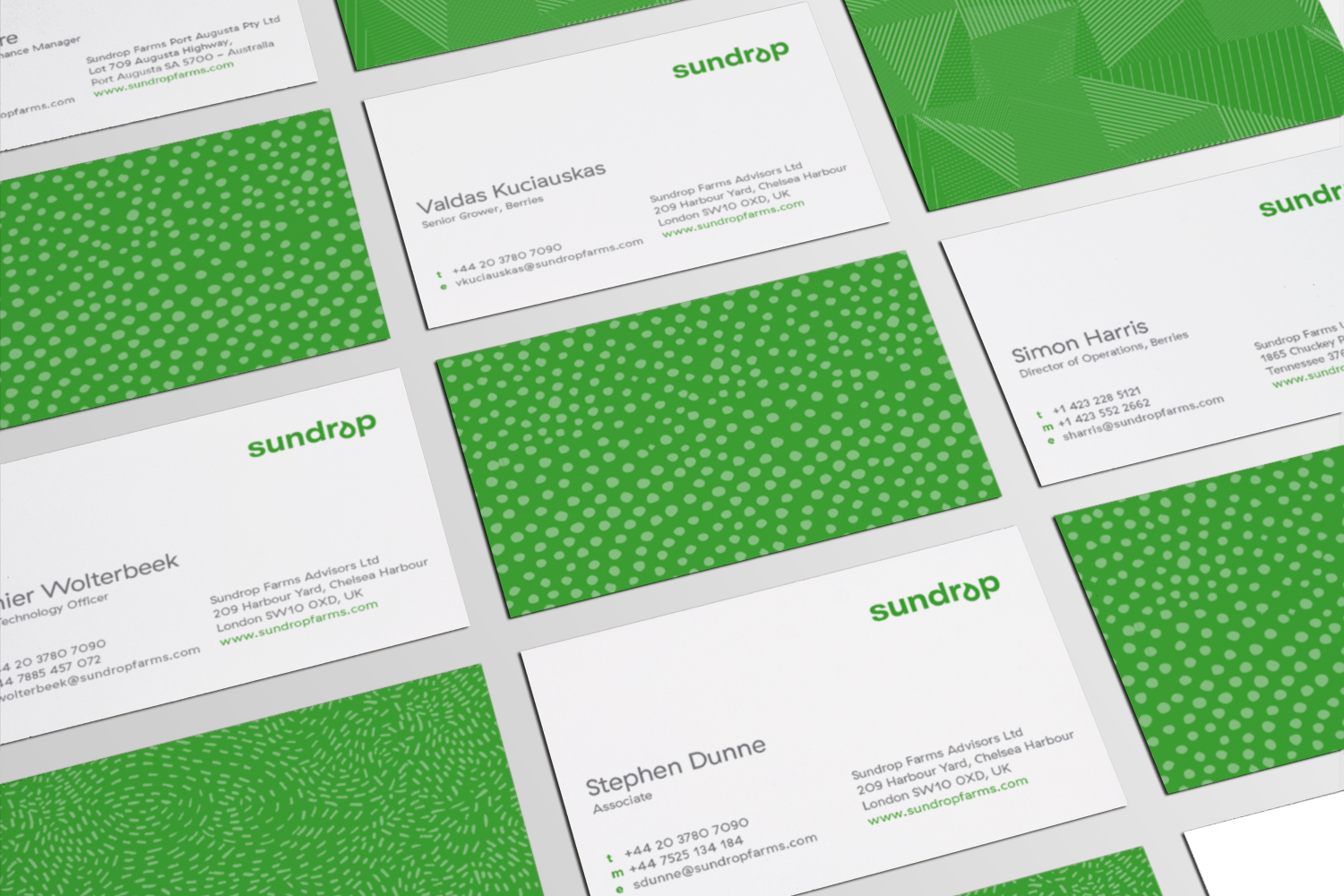 4-sundrop-bcards-all-1500x1000